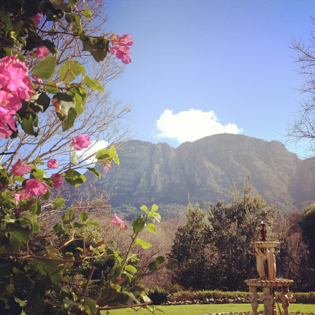 Vineyard Hotel and Spa, Cape Town