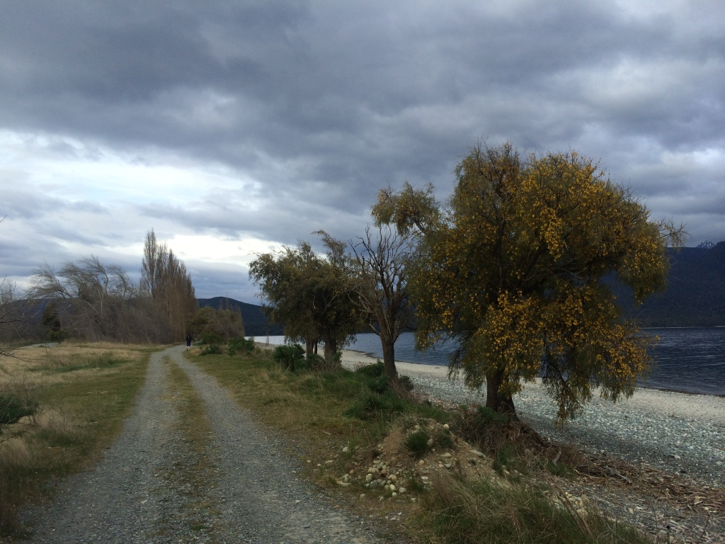 Running in Te Anau