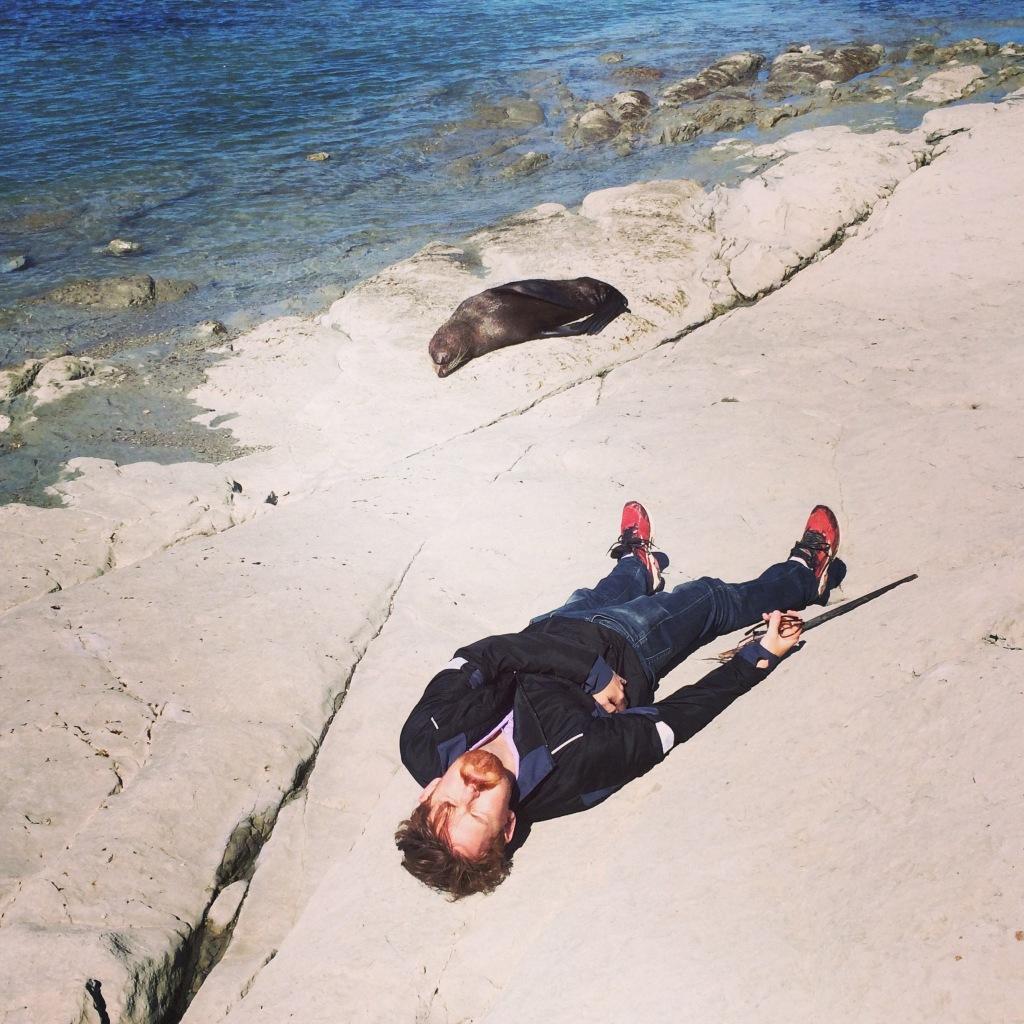 Al and a seal